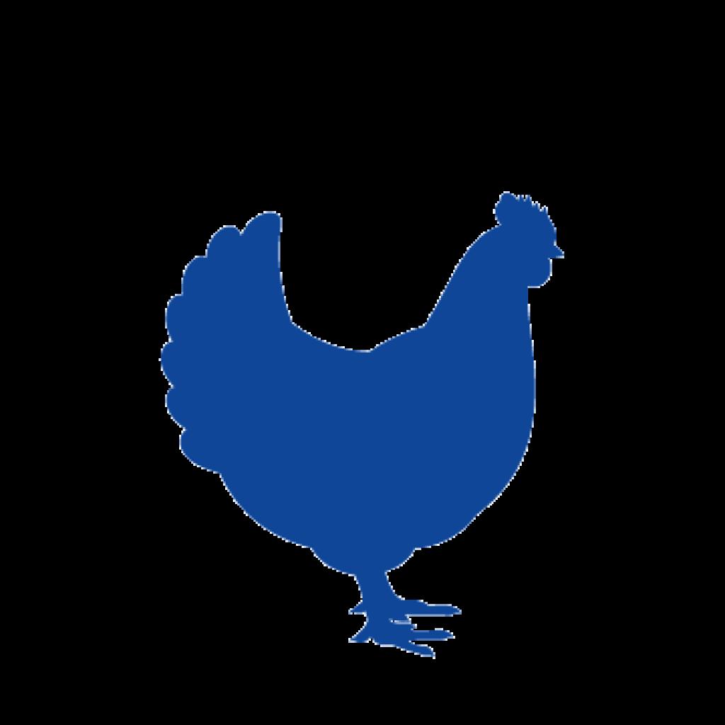 icono gallina