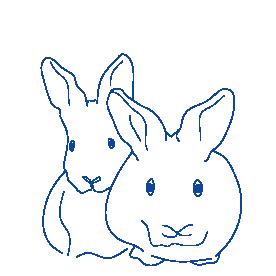 CTIcontrol conejos
