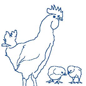 CTIcontrol aves